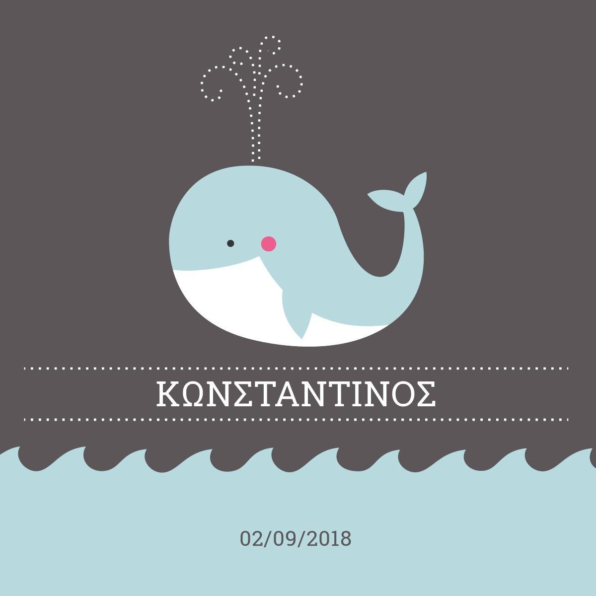 Μικρή φάλαινα